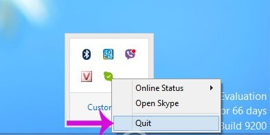 loi Skype has stopped working